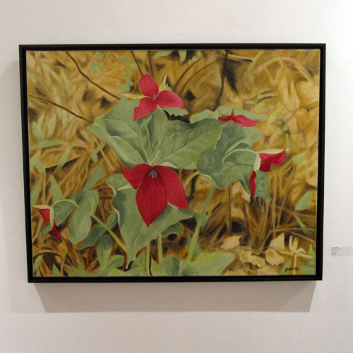 Janet Hilliard: Red Trilliums