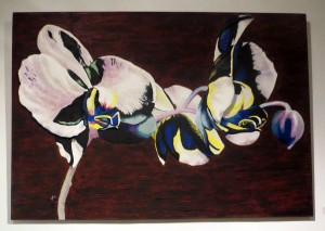 Janet Hilliard - Orchid Phalaenopsis