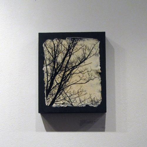 Amanda McKinney: Silhouette Series - Image #28 (1/30).