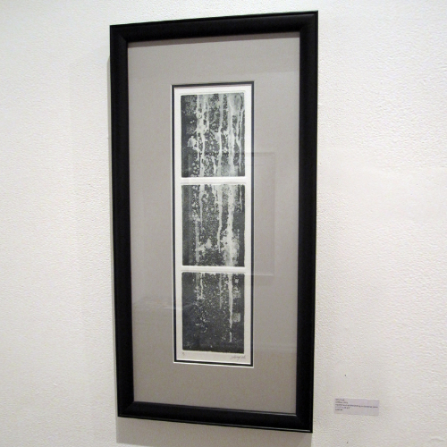 Amy Cook: untitled